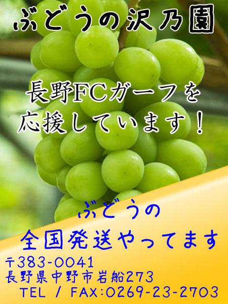 bnr_450x600_budou-sawa_ad